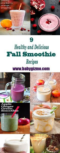I love all the flavors of fall. I seriously can't get enough. Then again, I'm hardly alone. It's hard to miss the pumpkin-flavored everything extravaganza that happens come October. But what if you want to indulge in fall flavors without packing on the pounds? I've started making some amazing fall-flavored smoothies that will absolutely knock your socks off. If you are craving, some delicious tastes of the season, check out these… #Fall #Smoothie #BabyGizmo
