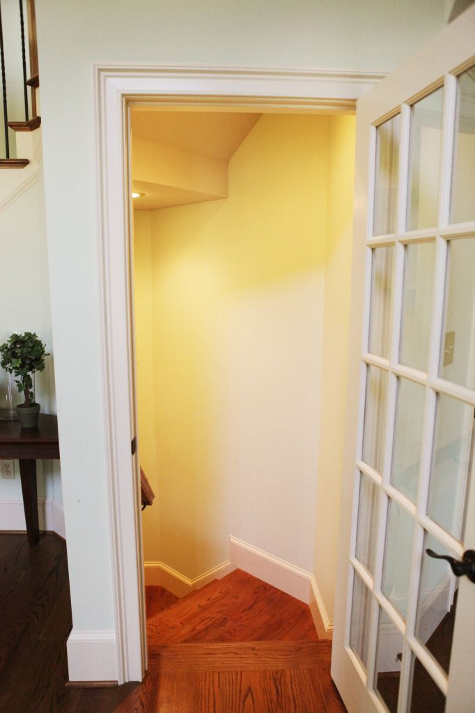 love the glass door idea for the basement door. Then just take out one of the panes so the cat can go in and out.
