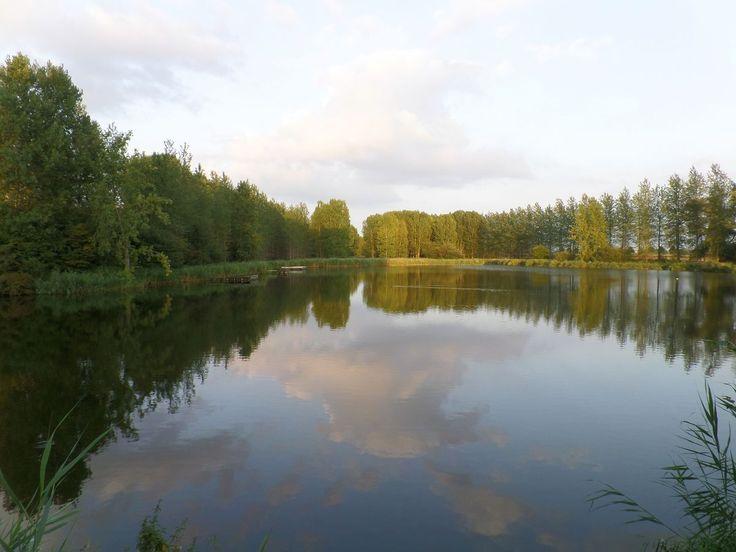 Het Eiland bij Hulst.