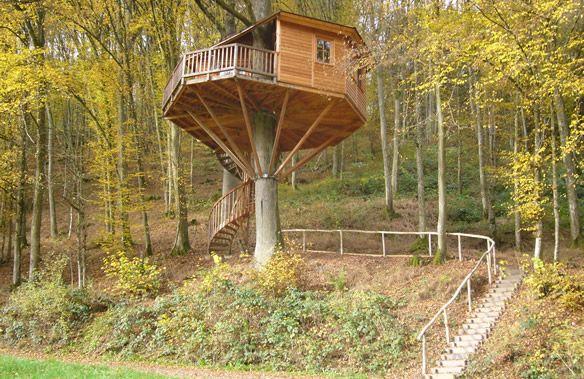 Das Cottage: Baumhaushotel SeeMÜHLE in Gräfendorf