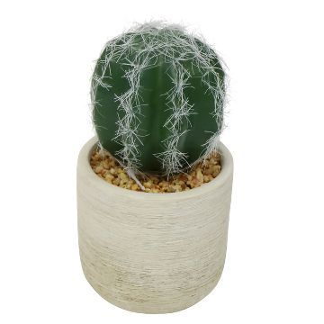 Artificial Cactus in Pot - White - Threshold™ : Target