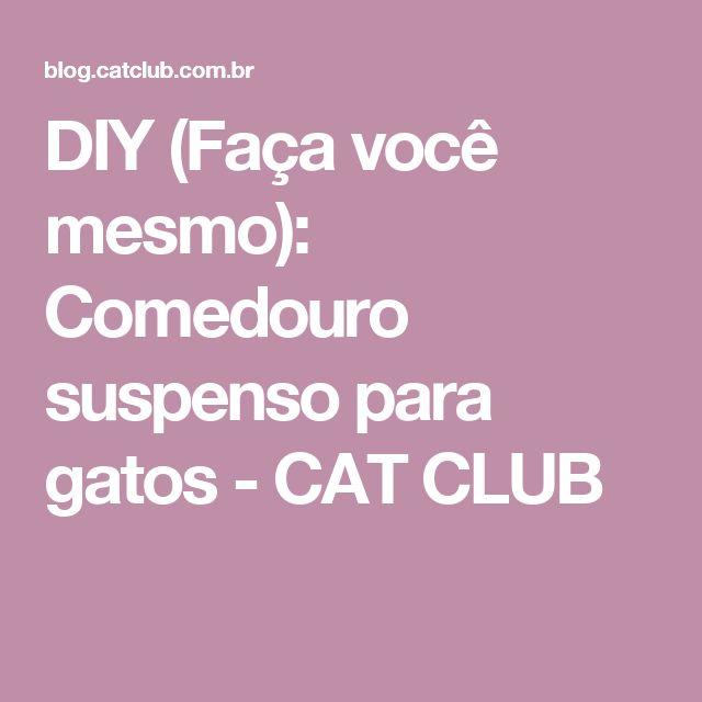 DIY (Faça você mesmo): Comedouro suspenso para gatos - CAT CLUB