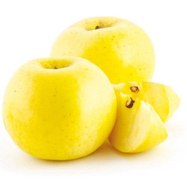 Jabłoń - Malus domestica 'Kronselka'