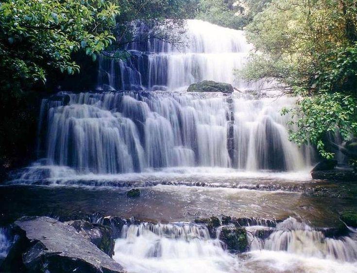 The Purakaunui Falls, The Catlins Coast, New Zealand