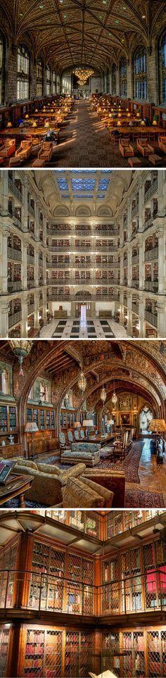 Deze pin heb ik gekozen omdat ik hou van fotografie en de oude gebouwen een heel mooi onderwerp zijn. Het past goed bij de taak omdat de gebouwen oude bibliotheken zijn.
