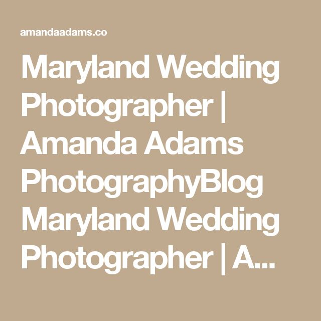 Maryland Wedding Photographer | Amanda Adams PhotographyBlog Maryland Wedding Photographer | Amanda Adams Photography