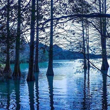 篠栗九大の森、篠栗町の写真: 森の中の散歩は癒されます - トリップアドバイザー メンバーが投稿した写真 (507 件) および篠栗九大の森の動画をチェック