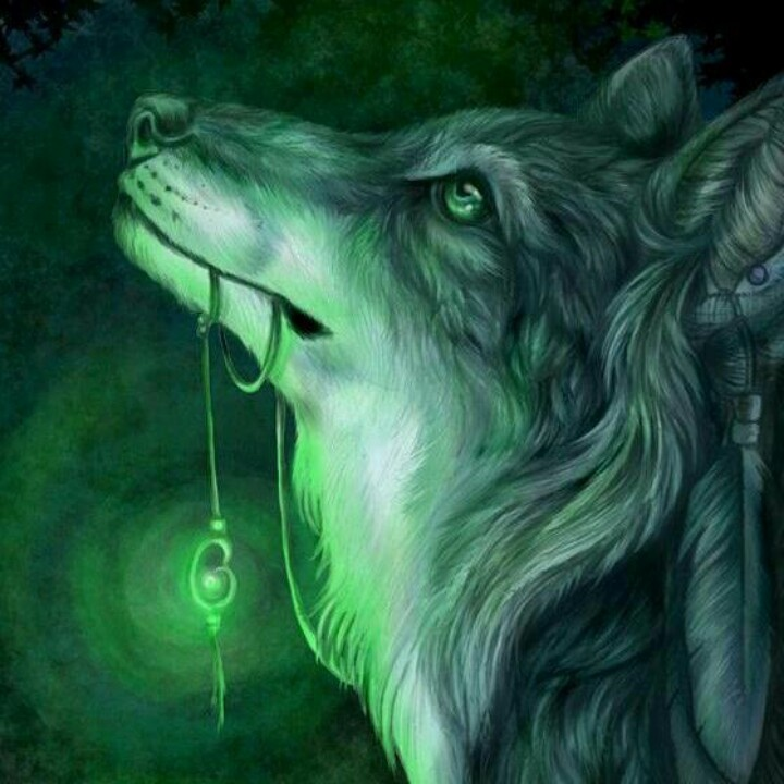A Lady And Her Dire Wolf: 109 Best Fantasy Wolves Images On Pinterest
