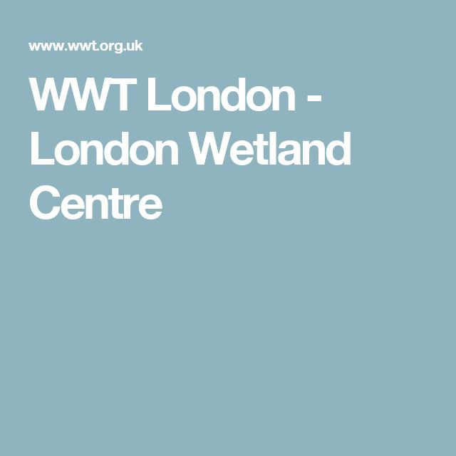 WWT London - London Wetland Centre