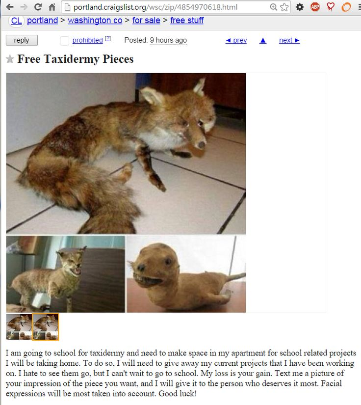 26 mejores imágenes de Crazy Craigslist Ads en Pinterest | Huevos ...