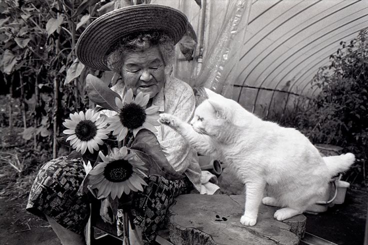 Meet Misa and Fukumaru. Thirteen years ago, photographer Miyoko Ihara began snapping pictures of the budding relationship between her now 88-year-old grandmother, Misa, and her odd-eyed kitten, Fukumaru. Since Misa found the cat abandoned in a shed, the pair have barely ever been apart. Their beautiful friendship is documented in a photo book, Misao the Big Mama and Fukumaru the Cat.