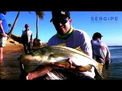 Sport Fishing Sergipe