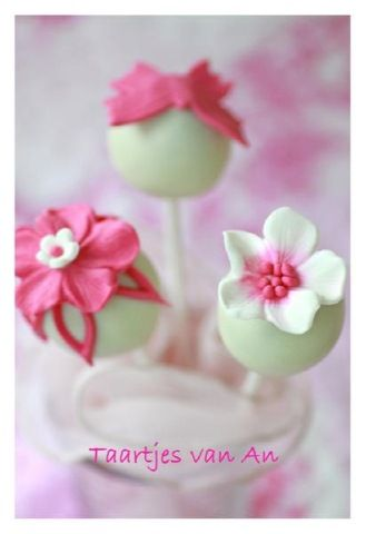 White and pink pops
