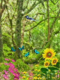 Пейзаж - анимация на телефон №1430208