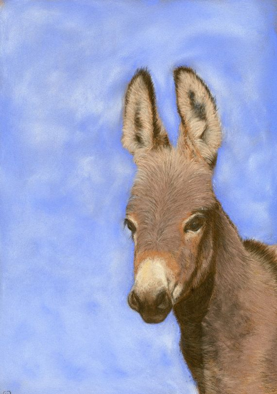 Young and free, Fine Art giclee print of a miniature Mediterranean donkey, limited edition, ideal Christmas present, pastel painting £35.00