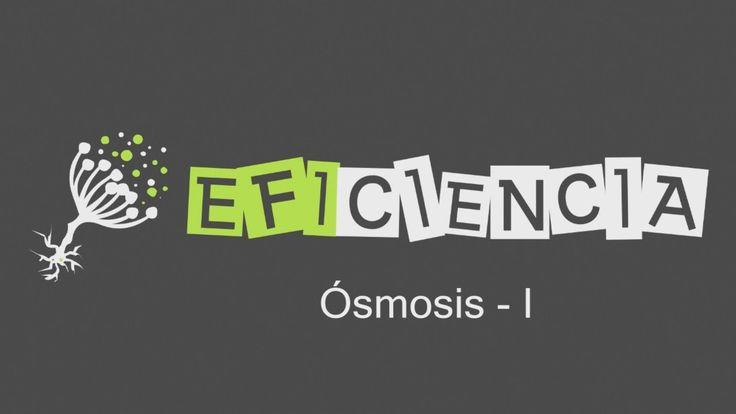 ÓSMOSIS -I Membrana semipermeable Paso disolvente Inversa y Directa Turg...