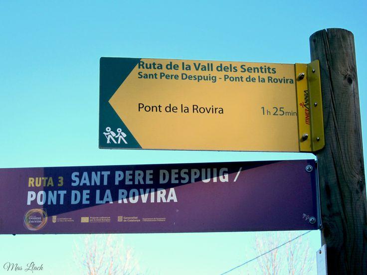 Inici ruta St.Pere Despuig - Pont de la Rovira.