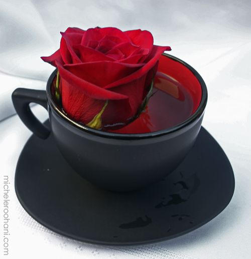 I would have this as table decorations at my wedding. Google Image Result for http://micheleroohani.com/blog/wp-content/uploads/2009/07/red-rose-in-black-tea-cup-michele-roohani.jpg