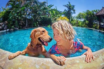 Hundeschwimmbecken