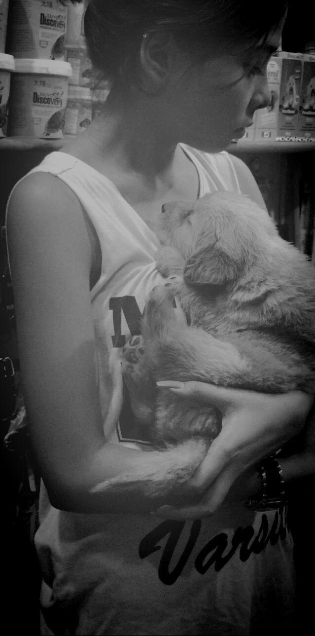 The day I got him❤️ My Golden retriever pup.