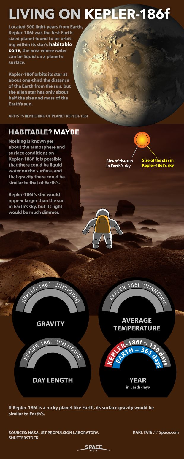 At last humans are able to make educated guesses about what living on alien worlds might be like. Here's what we know about the alien planet Kepler-186f.