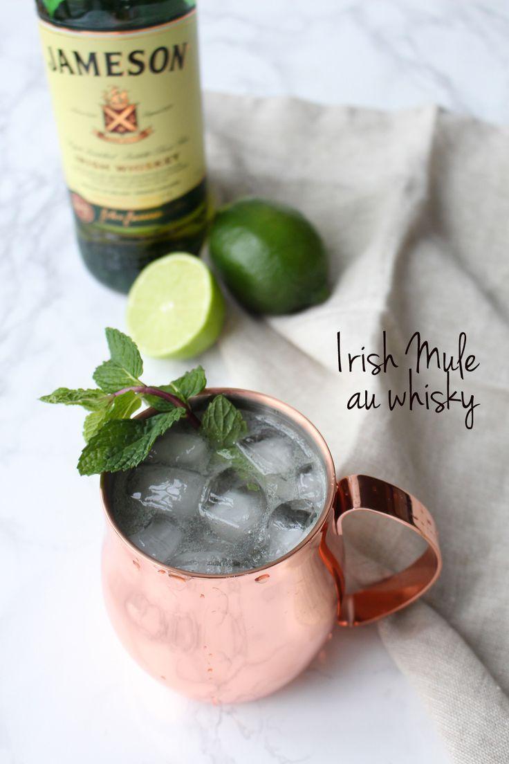 En collaboration avec la SAQ, on vous propose 3 recettes accessibles et rafraîchissantes faites à base de whisky et de bourbon. Cheers!