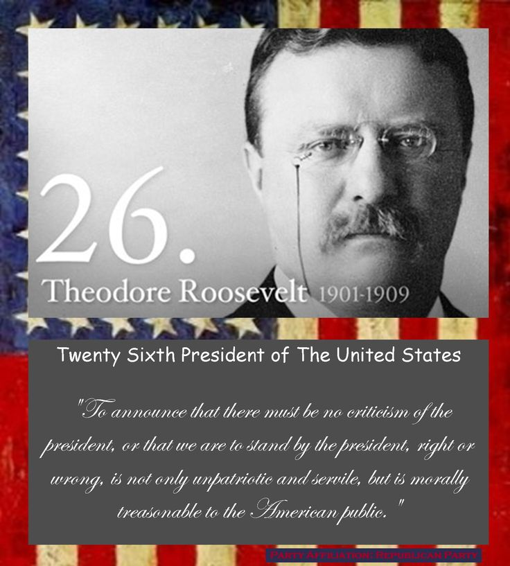 447 best President THEODORE ROOSEVELT images on Pinterest   Theodore roosevelt, American history and American presidents