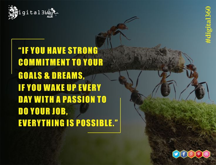 """""""If you have strong commitment to your goals & dreams, if you wake up everyday with a passion to do your job, everything is possible."""" #mondaymotivation #digital360 #goodquotes #quoteoftheday #passion #hardwork #dream #success #learning #lifelesson #possible #goals #newdelhi #India"""