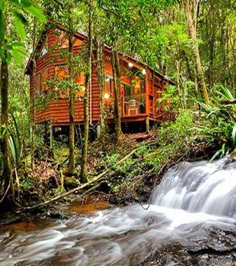Gold Coast Hinterland Accommodation - The Mouses House Rainforest Retreat