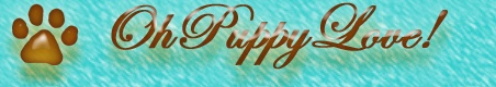 Oh Puppy Love – Morkies, Shorkies, and Maltipoos for Sale