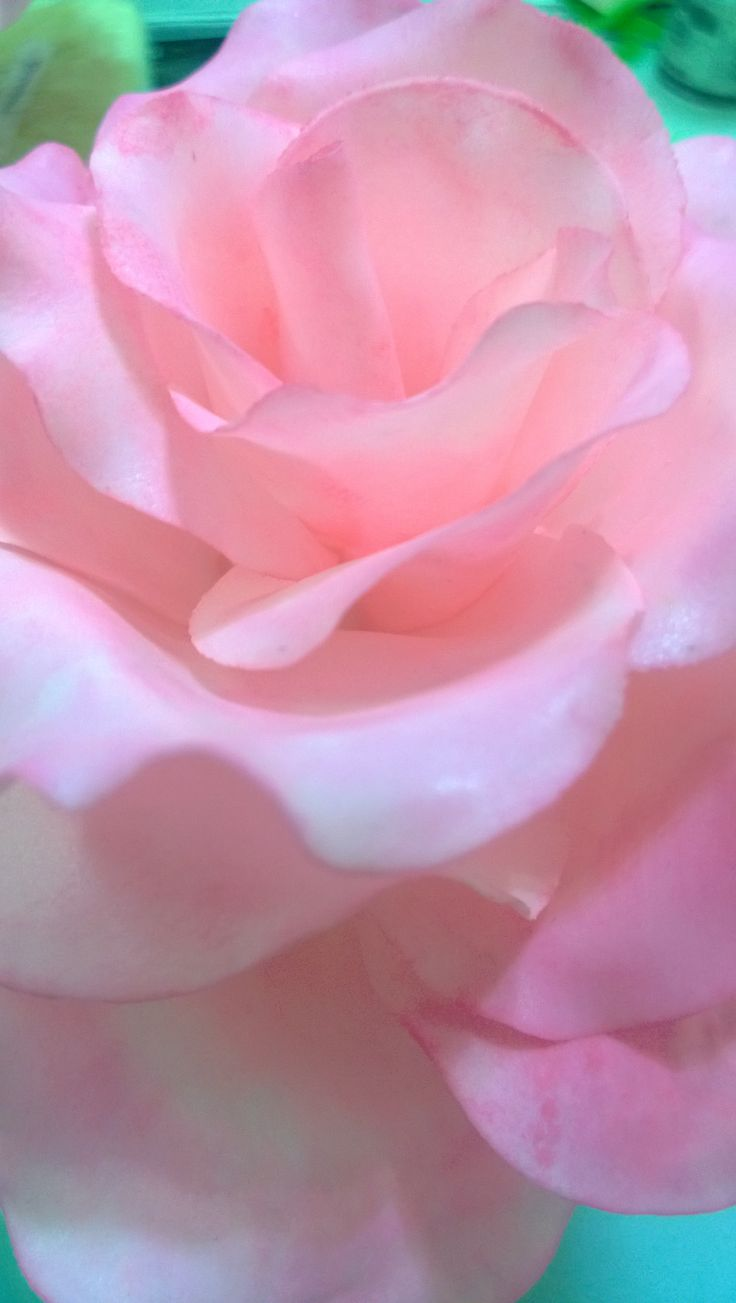 roses made from sugar for cakes.  tania@cakearts.co.za
