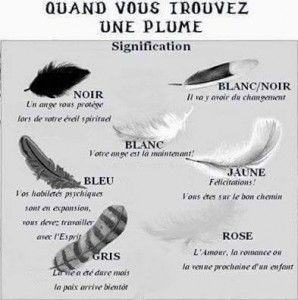 1000 id es sur le th me tatouage plume signification sur pinterest tattoo pied tatouage et - Plume noire signification ...
