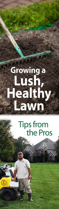 With the following insider tips from two pros in the grass business, you can grow a lush, healthy lawn. #grass