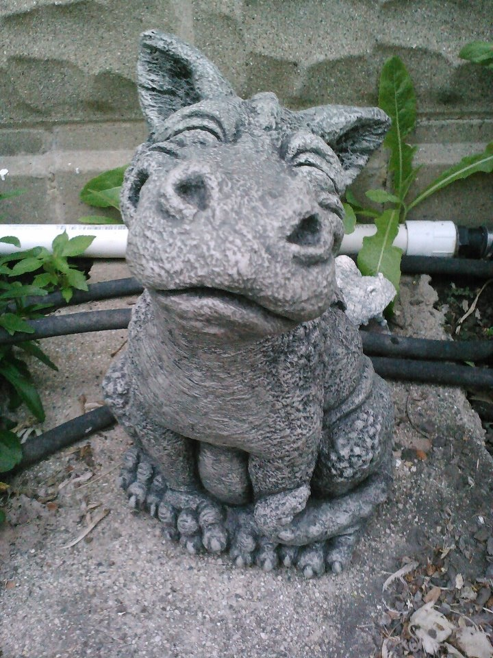 28 Best Images About Dragons On Pinterest Gardens