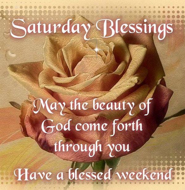 Saturday Morning Greetings