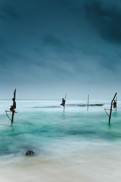 Fishermen catching small reef fish by sitting on small benches attached to poles which are stuck into the water a few meters offshore, known locally as stilt fishing.