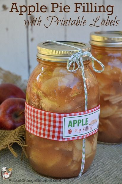 Canned Apple Pie Filling Recipe and Directions on PocketChangeGourmet.com