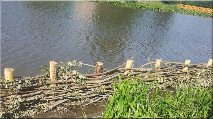 Weidenzaun für Uferschutz, Rundholz, akazie, natur