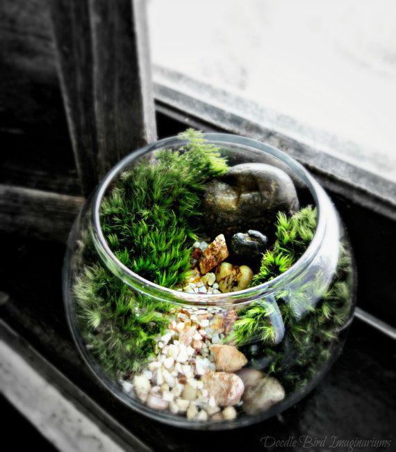 Miniature Terrarium Landscape in Glass Bowl Garden by DoodleBirdie, $22.00 - 25+ Best Terrarium Bowls Ideas On Pinterest Dish Garden, Plants