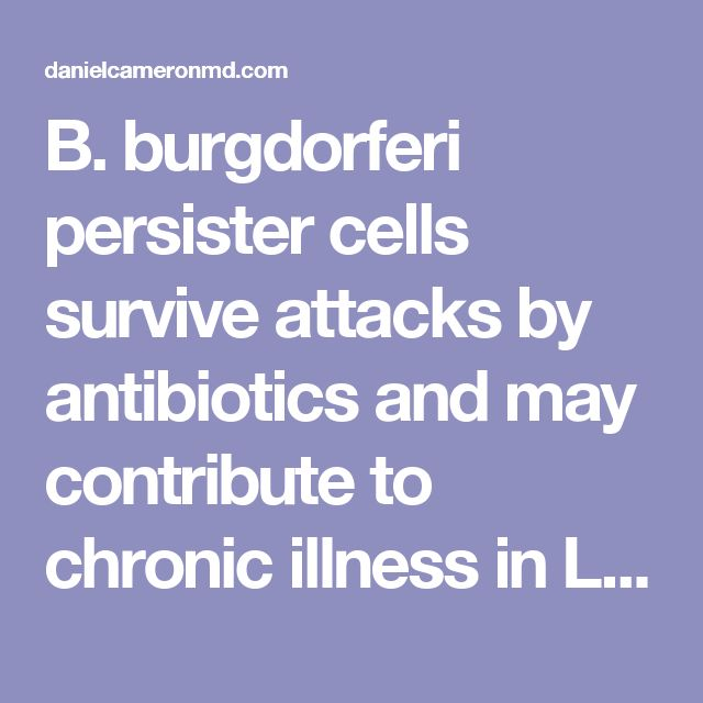 B. burgdorferi persister cells survive attacks by antibiotics and may contribute to chronic illness in Lyme disease patients - Daniel Cameron MD