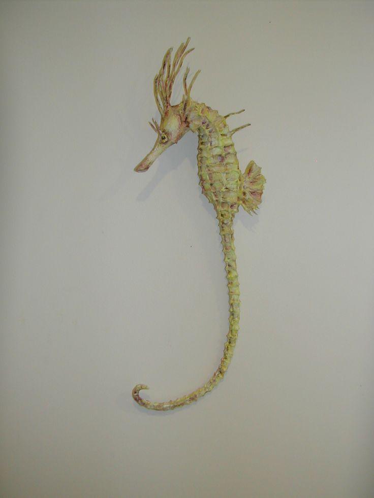 Seahorse by Jan Kerr