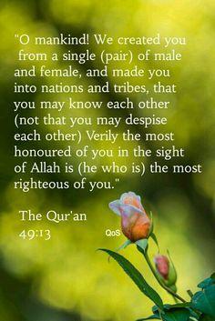 The Holy Quran 49:13. https://www.pinterest.com/pin/346917977521994094/