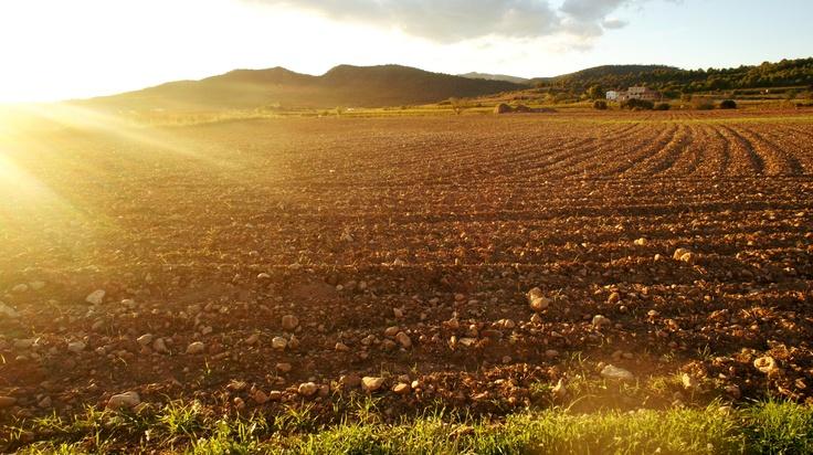 Baix Penedès, Catalunya
