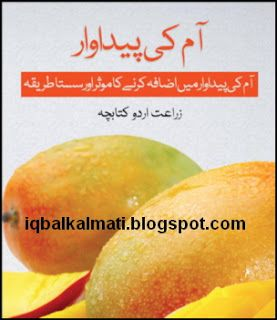 Mango Production Easy Methods in Pakistan Urdu PDF is available to read online and download http://iqbalkalmati.blogspot.com/2016/05/mango-production-easy-methods-in.html