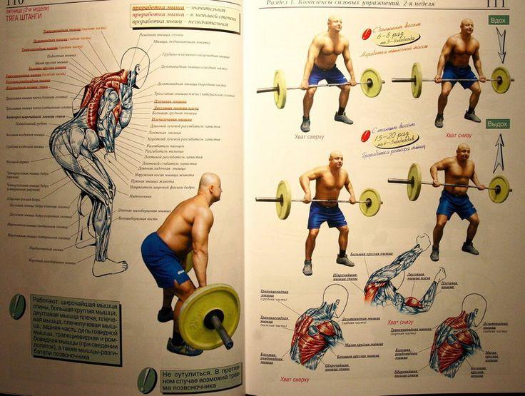 Атлетическая гимнастика - упражнения на мышцы спины IMG_9597