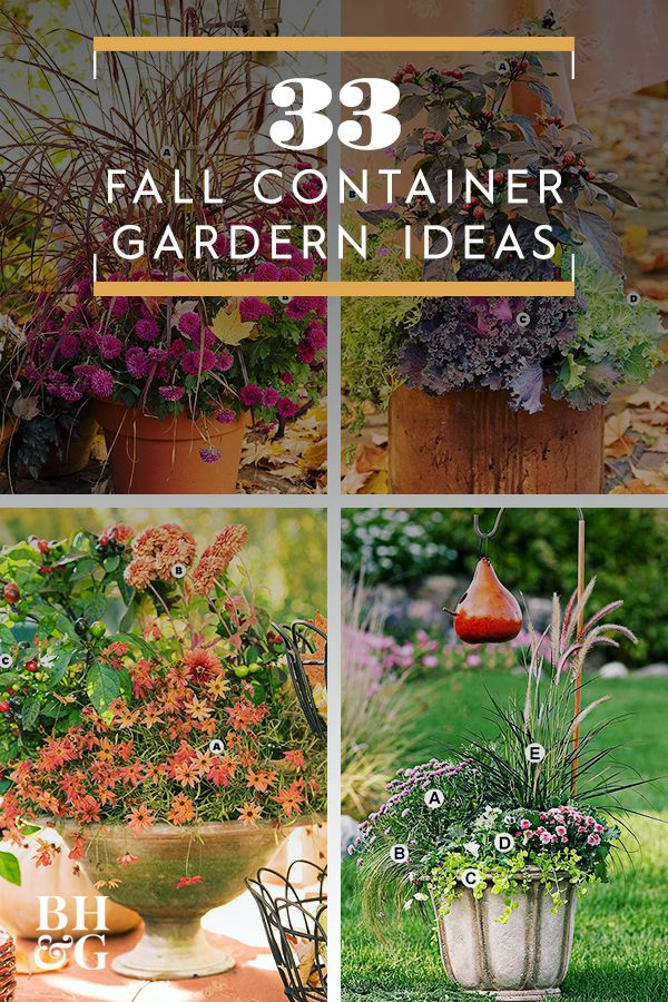 31 Stunning Fall Container Garden Ideas To Try Right Now Fall