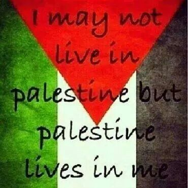 It really does, i will never forget you Palestine