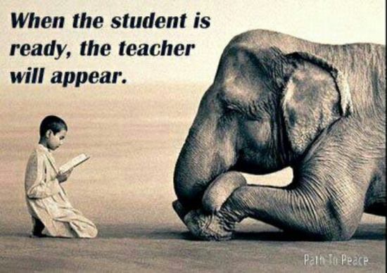 "Image result for """"when the student is ready, the teacher will appear"""