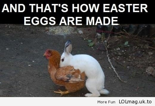 Finally the Mystery Behind the Easter Eggs is Over!     Haha!