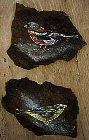 Cuadro Piedra Pájaros